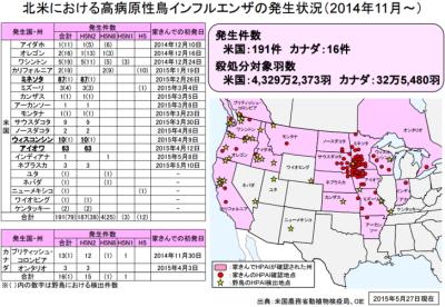 アメリカ本土の鳥インフルエンザ