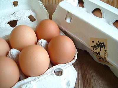新鮮な放し飼い鶏の卵をお届け